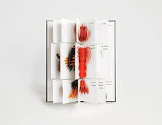 Graphics we like / Flip Book / Children / Image of BESTIARIO Pop-up