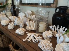 Coral #decor galore! #Dallas #Mecox #interiordesign #MecoxGardens #nautical #furniture #shopping #home #decor #design #room #designidea #vintage #antiques #garden