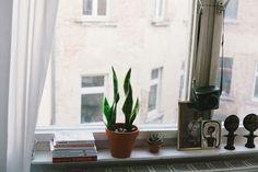 adorable little window sill to display lovely items. \\\\ via Bonjour Johanna