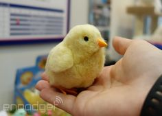Tokyo Toy Show 2014: Robot pets, maglev toys and more!