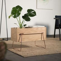 Tom Side Table / Planter in American Oak Designed by Max Hunt & Tom Crosby TOM planter is a versatile indoor planter box / side table . Hand made American Oak box with a wire support frame and han. Indoor Planter Box, Planter Table, Planter Boxes, Side Tables For Sale, Oak Coffee Table, Furniture Making, Furniture Design, Wood Furniture, Home Decor