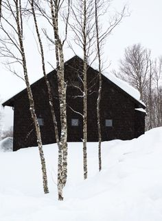 A barn is all American, yet thoroughly modern, seemingly primed for loft-like living. Here are 20 examples of residential modern barn architecture. Snow Scenes, Winter Scenes, Winter Cabin, Snow Cabin, Forest Cabin, Cozy Cabin, Cozy Winter, Winter Snow, Winter White