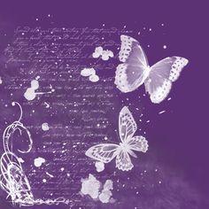 Purple Butterflies Photo: