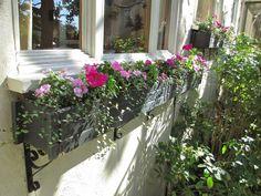 Andie's Way: Spring Window Boxes - Plenty of Pink!