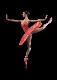 .love the matching pointe shoes