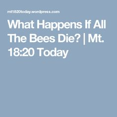 What Happens If All The Bees Die? | Mt. 18:20 Today