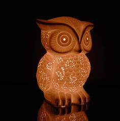 I don't know why but I love owls and this would be so cute in the house.