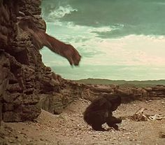 The leopard attack scene in 2001: a space odyssey. Learn how they shot it on 2001italia.it