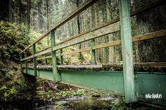 Bridge, Deep, Posts, Facebook, Childhood Memories, Travel Report, Adventure, Woodland Forest, Viajes