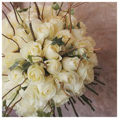 Rustic roses. White rose with branches and ivy.