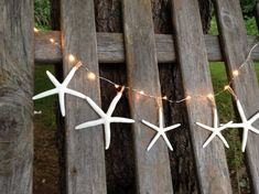 Lighted starfish garland 10 ft -Beach or home, wedding decor. Real starfish hung on LED lights with clear bulbs. Great for decorating weddings, buffets, home, window, tree or