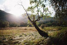 West Highland Way – Teil — Reisebericht von Mario Taferner West Highland Way, Mario, Hiking, Adventure, Mountains, Nature, Travel, Scotland, Travel Report