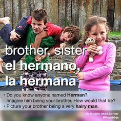 brother, sister el hermano, la hermana • Do you know, or can you think of anyone named Herman? Like: Herman Melville, Pee-wee Herman, Herman Brood, Herman de Coninck, Herman Munster,.. Imagine him being your brother. How would that be? • Picture your...