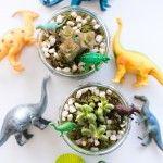 Dinosaur+Terrariums