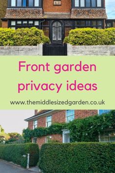Best front garden ideas for privacy, gates, planting and more #middlesizedgarden Privacy Trellis, Garden Privacy Screen, Privacy Hedge, Redrow Homes, Weeping Trees, Evergreen Hedge, Front Gardens, Georgian Homes, Small Trees