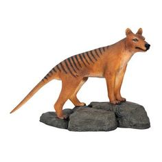 Outdoor Statues Large Size  Design Toscano Mysterious Tasmanian Tiger Statue Patio Design ** This is an Amazon Associate's Pin. Click the VISIT button to enter the website for more info.