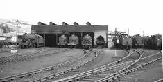 Image result for photos of doncaster railway shed in 1960