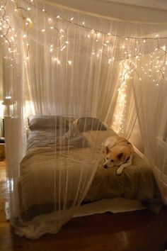 Decorate your room with thin curtain with lights all around the bed to making it to look more beautiful and cozy.