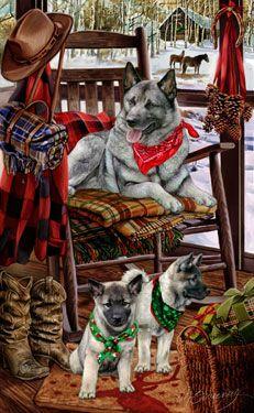 Norwegian Elkhound - Christmas Companions - by Margaret Sweeney