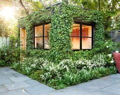Gardens, Appealing Modern Garden Shed Designs With Eco Friendly Themed Also Climbing Plants On The Wall Also Gray Concrete Floor Also White ...
