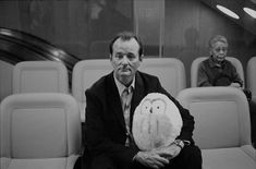 Lost in Translation - Murray