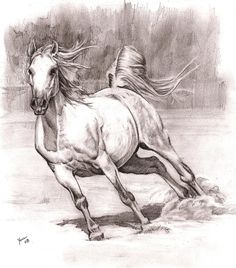 10  Cool Horse Drawings for Inspiration, http://hative.com/horse-drawings/,