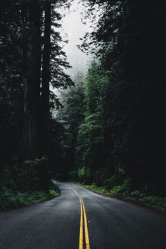 everything is a road. Scenery Photography, Forest Photography, Landscape Photography, Digital Foto, Nature Aesthetic, Forest Road, Nature Wallpaper, Aesthetic Wallpapers, Twilight