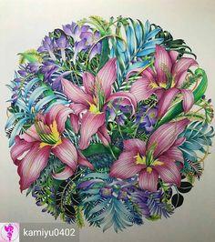 Uau!! Use #colorindolivrostop @Regrann from @kamiyu0402 -  やっっと完成しましたっ✨✨#レイラデュリー さんの#世界一美しい花のぬり絵book ❤️今回は#ホルベイン色鉛筆 が主で途中から仲間入りをした#プリズマカラー を使用しましたっ✨✨紫のお花はプリズマですっ✨✨プリズマのあの滑らかな感じと白の使いやすさ、本当に虜になっちゃいましたっ❤️ 今日旦那様にプレゼンをして、132色なら買っても良いと言われたので今からワクワクですっ❤️ あとレイラさん2つ…!頑張らなければっ✨✨ #おとなのぬりえ #おとなの塗り絵 #おとなのぬり絵 #大人のぬりえ #大人のぬり絵 #大人の塗り絵 #コロリアージュ #leiladuly #floribunda #coloringbook #ホルベイン 2017.4.14 no.113colorindolivrostop - #regrann