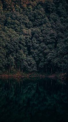 forest with lake dark green landscape iphone xr wallpaper nature Wallpapers Android, Live Wallpapers, Iphone Wallpaper Preppy, Iphone Wallpaper Images, 3d Wallpaper, Cute Backgrounds For Phones, New Backgrounds, Iphone Wallpaper Landscape, Nature Wallpaper