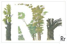 Modern ABC books for kids: An Artist's Alphabet by Norman Messenger