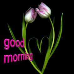 Good morning S.Lavanya