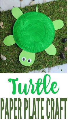 DIY Turtle Paper Plate, Crafts with Paper Plates, How to Make Turtle Crafts, Rainy Day Craft Ideas, Paper Plate Art, Paper Plate Crafts For Kids, Craft Kits For Kids, Fun Arts And Crafts, Easy Crafts For Kids, Fun Crafts, Art For Kids, Craft Ideas, Children Crafts