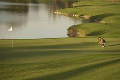 Par or Birdie? Green 7 at Golfclub Gut Altentann