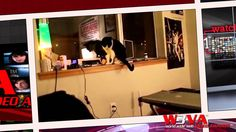 News Videos & more -  Cats Can Be Jerks - W3VA Daily Show-3-15-13-Trending video #Music #Videos #News