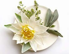 Zen Thyme - Conjures feelings of peace and harmony. White sage and thyme fuse with lotus flower, sandalwood and musk!