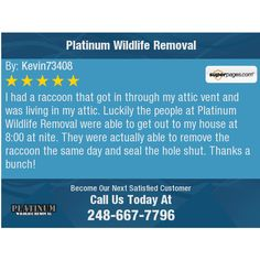 I had a raccoon that got in through my attic vent and was living in my attic. Luckily the...