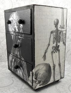 Black and White Vintage Anatomy Stash Jewelry Box by pzcreations22, $27.50