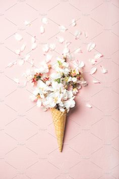 of waffle sweet cone Flat-lay of waffle sweet cone with white almond blossom flowers over pastel light pink background top view. Spring or summer mood concept Cute Wallpaper Backgrounds, Tumblr Backgrounds, Pastel Wallpaper, Cute Wallpapers, Iphone Wallpaper, Flowers Background, Sweet Cones, Pink Iphone, Typography Poster Design