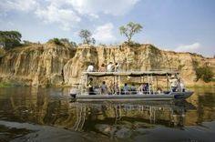 A Must See: Uganda Safaris