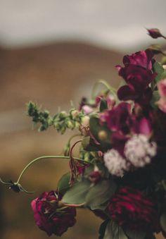 romantic deep purple blooms