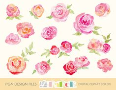 Check out roses watercolor by helloPAPER on Creative Market