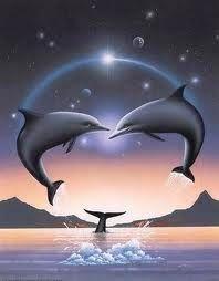 53 Idee Su Delfino Delfini Delfino Arte Tatuaggio Di Delfini