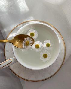 Cream Aesthetic, Classy Aesthetic, Flower Aesthetic, Aesthetic Vintage, Aesthetic Food, Aesthetic Photo, Aesthetic Pictures, Flower Tea, Glowing Skin