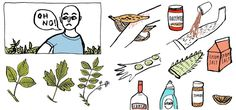 how to get rid of poison ivy in one day