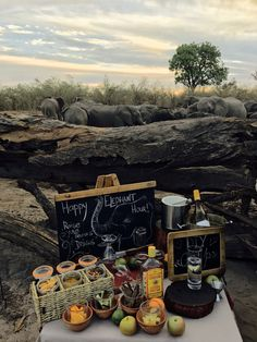 Sundowner GinUps with Elephants @ Savuti Bush camp Safari Food, In And Out Movie, Out Of Africa, Picnic Foods, Go Camping, Dream Vacations, Elephants, Fathers Day, Magic