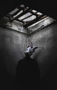 horror rabbit   by Giorgia Cinelli
