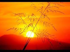 Trilhas de Luz: De um Repontar de um Sol Eterno