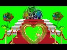 Love Green screen video effects 2019 Teelsingh Green Screen Video Effect, Green Screen Video Backgrounds, Green Background Video, Iphone Background Images, Studio Background Images, Flower Background Wallpaper, Frame Background, Green Screen Photography, Photography Studio Background