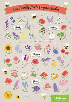 #bee aware month  Flowers for bees