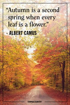 25 Cozy Autumnal Quotes to Get You Ready for Fall